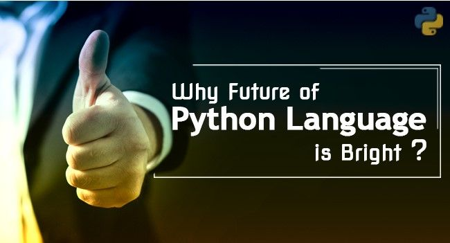 Why Python Language is important for the success of a Software Developer
