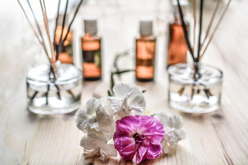 White and Purple flower plant on floor - Stress Relief Activities | Blurbgeek