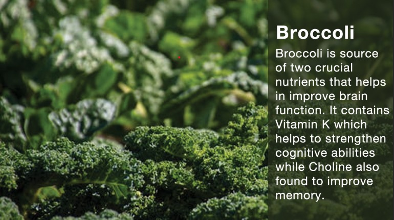 Benefits of Eating Broccoli During Exams - Blurbgeek
