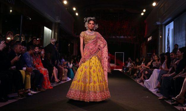 Saree Indian Traditional Dress